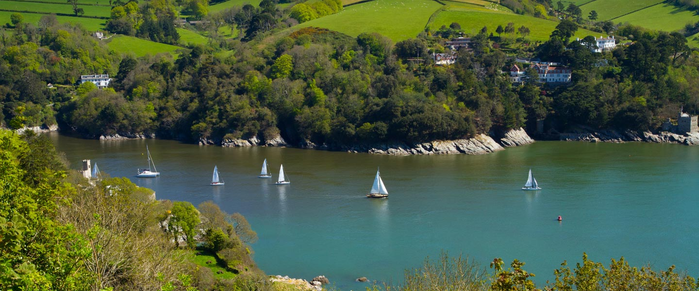 river dart view